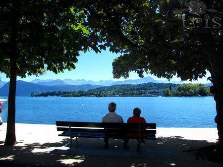 坐在湖边欣赏风景的惬意时光