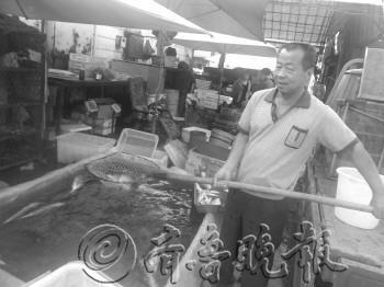 滨州一水产店的徐师傅展示他家出售的淡水鱼。