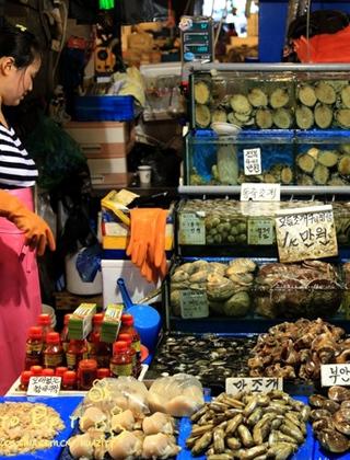 首尔最大水产市场吃海鲜