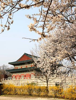 韩国中部自助游全攻略