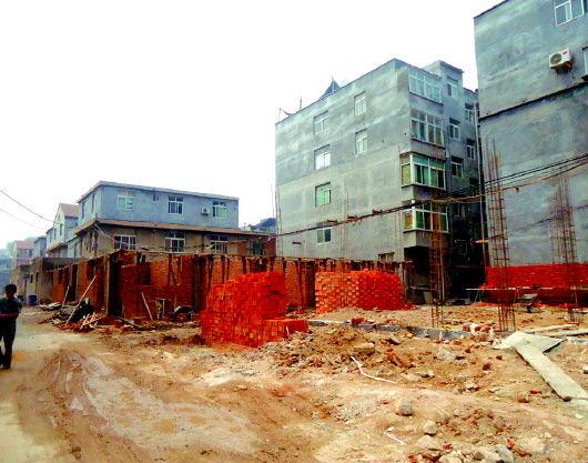 在宋刘村,建设中的楼房随处可见。