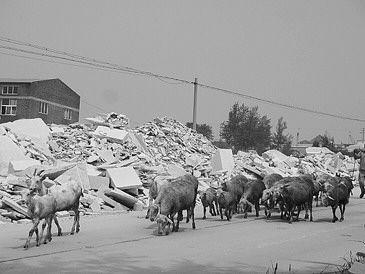 图③:乡间道路两侧,石材垃圾堆积如山。   □记者 肖芳 报道