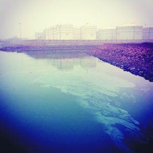 2月2日,黄岛附近海面依然飘散着难以吸尽的油污。