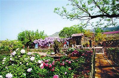 休闲农业与乡村旅游从最初的农家乐形式已逐渐升级为