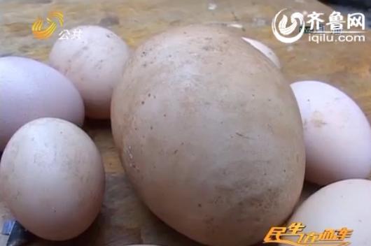 巨型蛋重达半斤