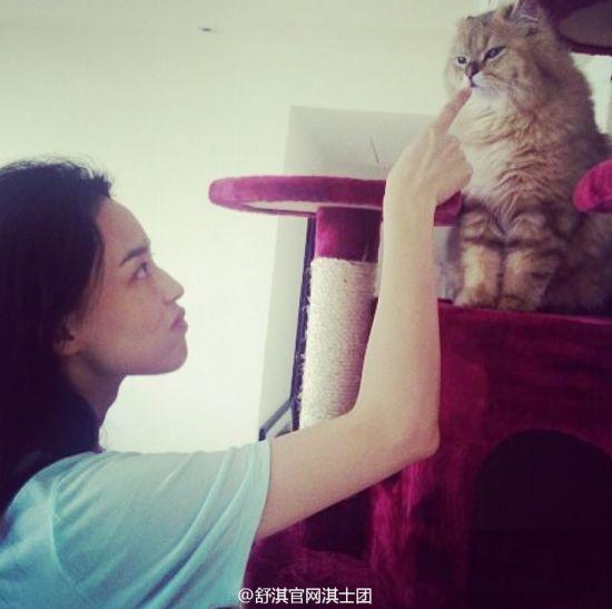 舒淇教训爱猫