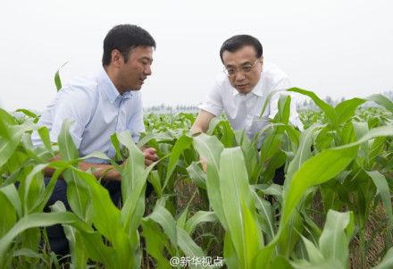 李克强与农民细算收益,赞现代农业造福三方