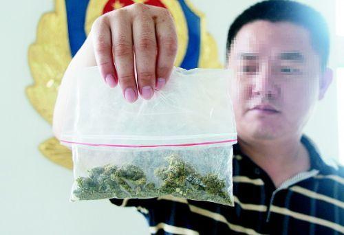 济南禁毒民警展示缴获的大麻制成品。
