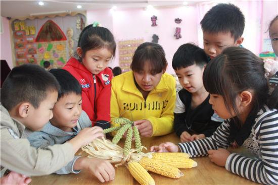 大豆,高粱等粮食作物,了解他们的用途和种植过程