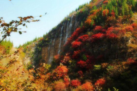 现为国家4a级景区,国家森林公园,国家地质公园,先后荣获山东省十佳