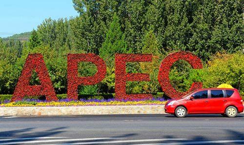 APEC期间,山东部分城市将对机动车实行单双号限行(资料图)