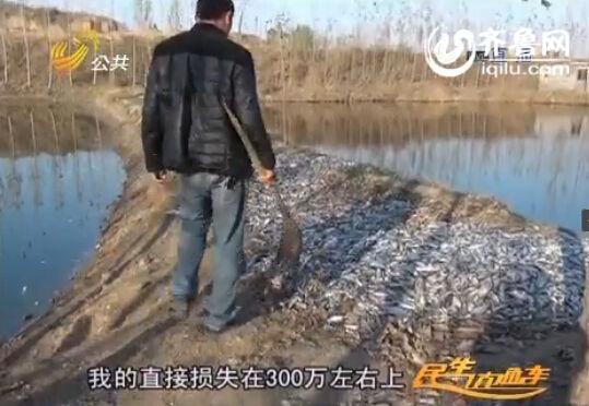 养鱼户在满是死鱼的河堤上。