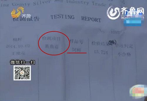 济南上万斤原奶查出致癌物(视频截图)