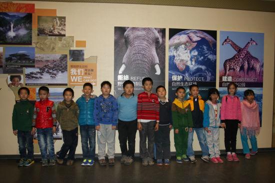 野生动物制品展览