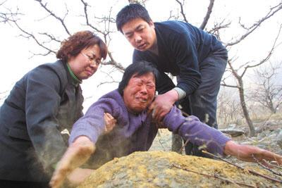 律师:若聂树斌案为冤案王书金案也需重审