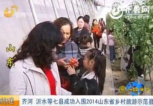 齐河、五莲等七县入围2014山东省乡村旅游示范县。(视频截图)