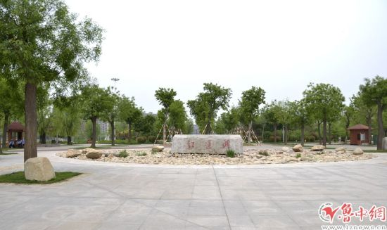 淄博桓台红莲湖东区封闭六个月后试开放