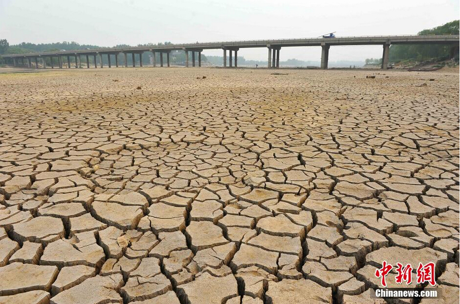 潍坊三座大中型水库干涸
