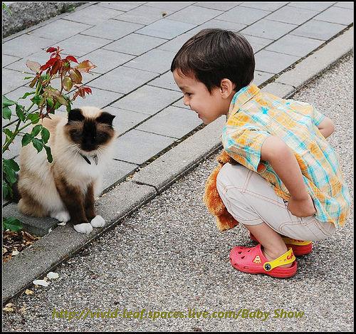 """你的提醒为什么会成为孩子的""""耳旁风""""?"""