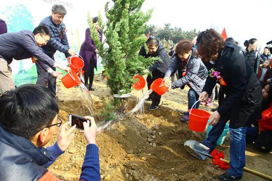 """""""九龙城组织的这两届植树节"""