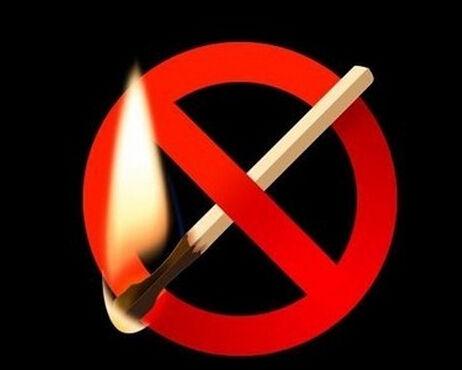 东营重点森林防火区发布禁火《通告》图片