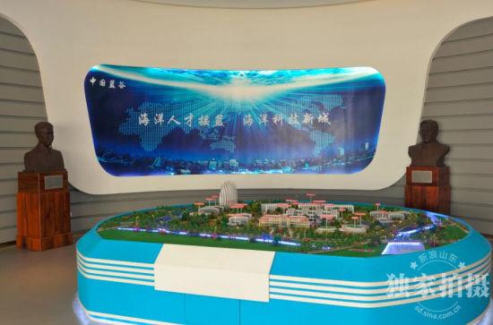 中国日报网:Full steam ahead for Oceantec Valley
