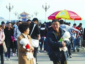 青岛迎62万游客